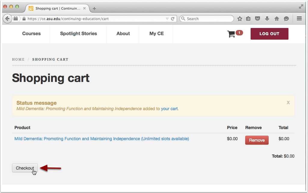 3. Review Shopping cart