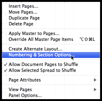 InDesign numbering and section options