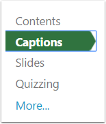 "2. Select ""Captions""."