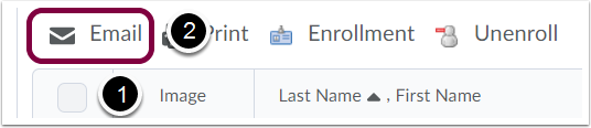 "2. Select the checkbox next to the person/people you want to email, and select ""Email""."