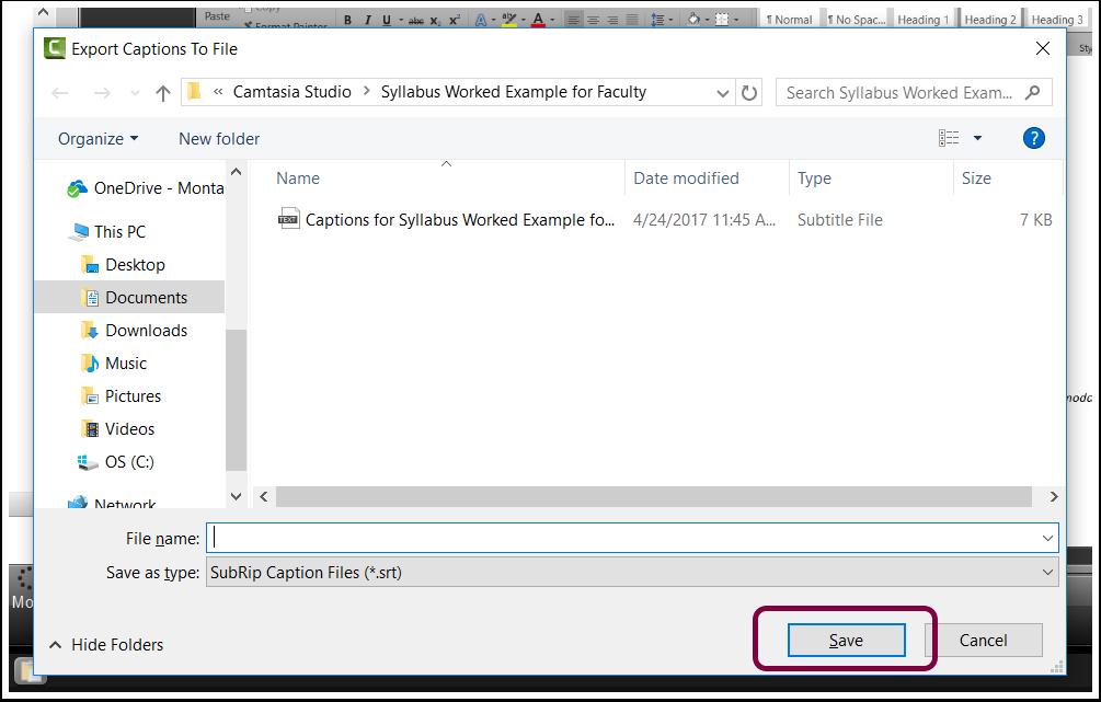 3. Save the SubRip Caption File (*.srt).