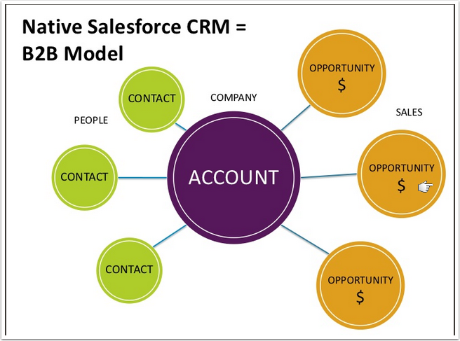 The Standard Salesforce model