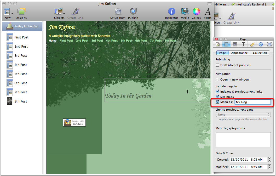 With the home page selected, use the inspector to set the page name.
