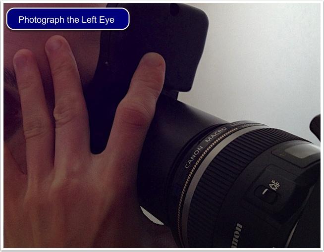 Left eye - Oeil Gauche