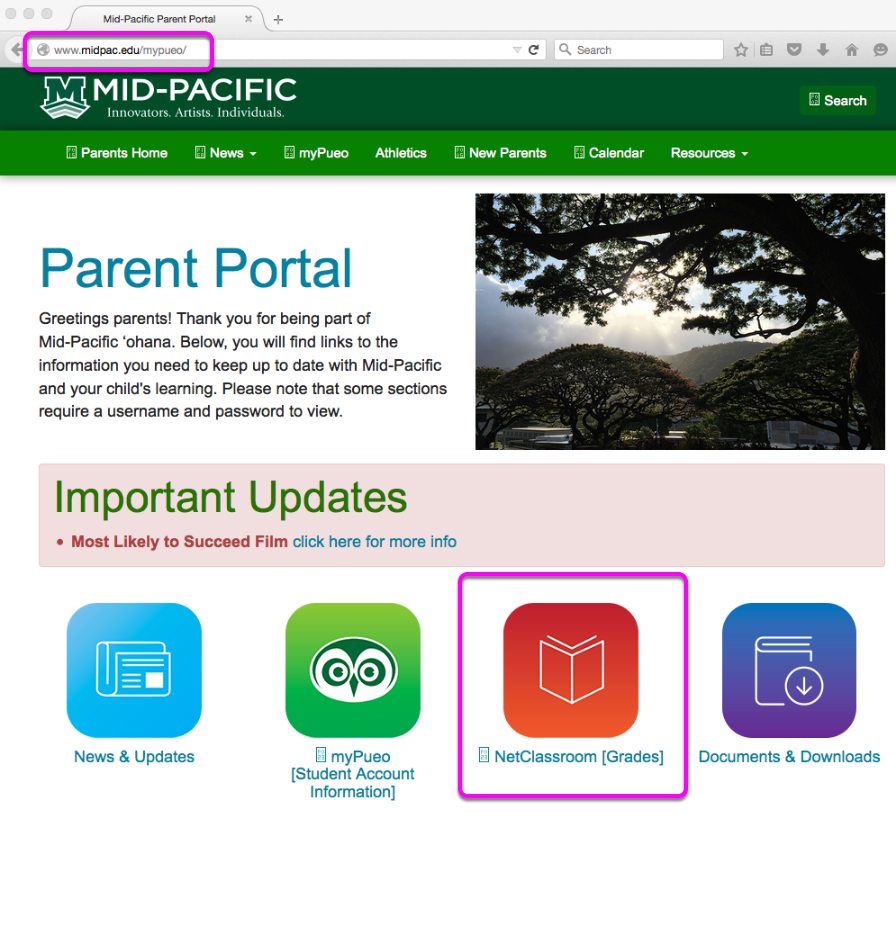 Go to the Mid-Pacific Parent Portal.