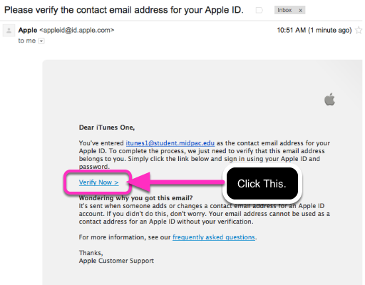 11.1 Check your email account for Apple ID verification Email