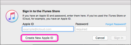 10. Create your Apple ID.