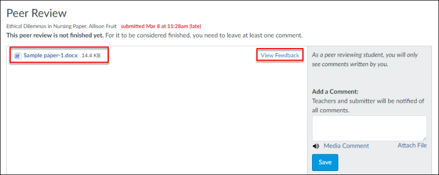 Screenshot of the View Feedback button.
