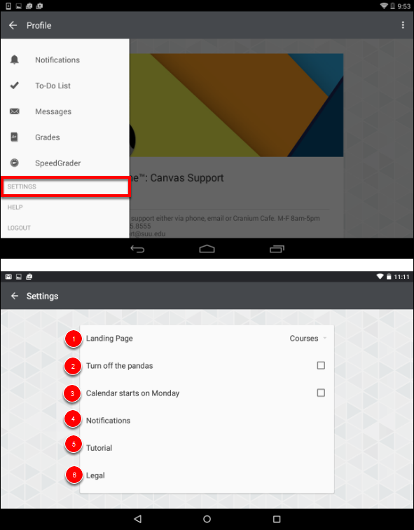 Screenshot of the settings.