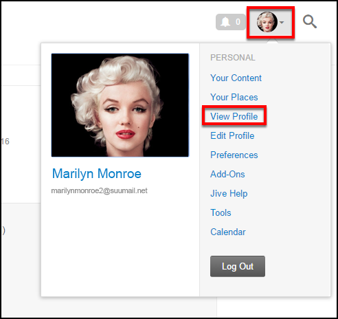Screenshot of the View Profile option.