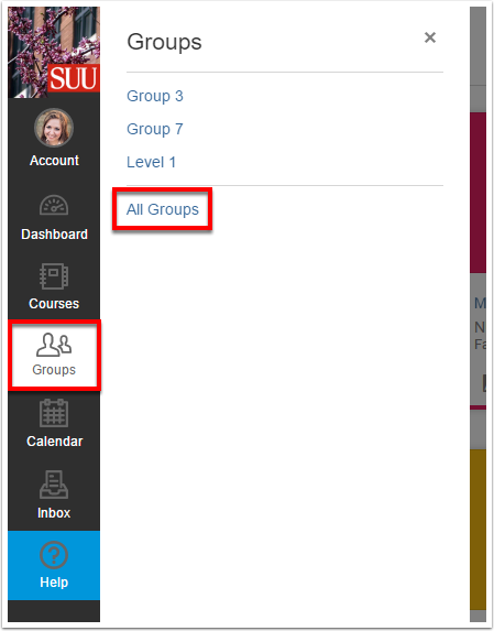 Screenshot of the Groups button.