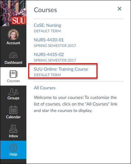 Screenshot of the courses menu
