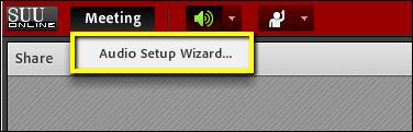 Screenshot of the Audio Setup Wizard button.