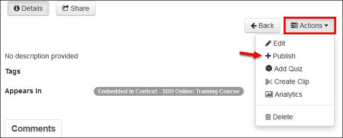 Screenshot of the Publish option.