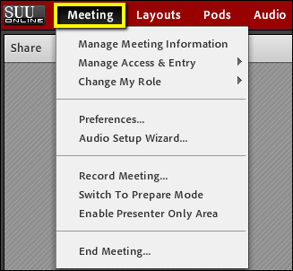 Screenshot of the meeting tab.