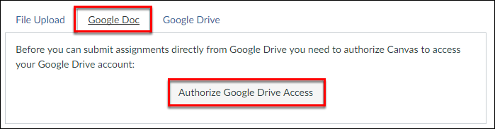 Screenshot of the Google Doc tab and Authorize Google Docs Access button.