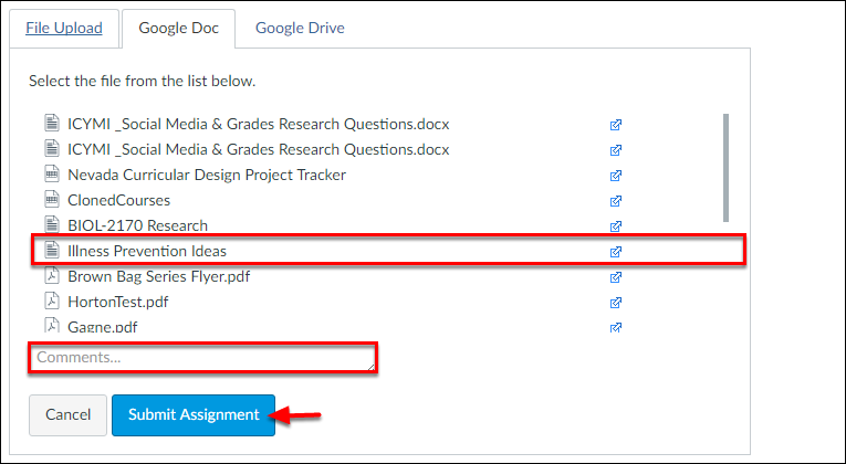 Screenshot of the selected file, comments box, and Turnitin option.