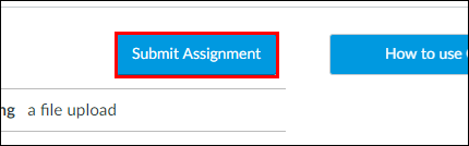 Screenshot of the Submit Assignment button.