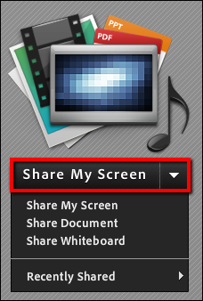 Screenshot of the Share My Screen option.