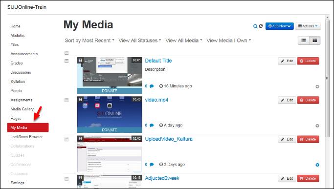 Screenshot of the My Media option.
