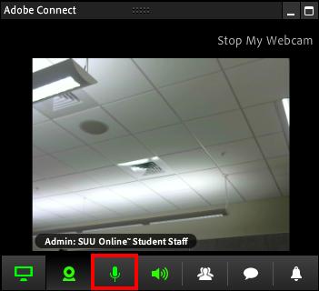Screenshot of the microphone tab.