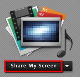 Screenshot of the Share My Screen button.