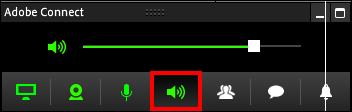 Screenshot of the speaker tab.