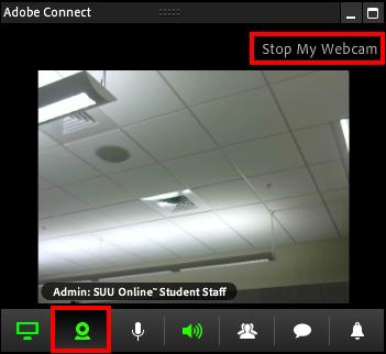 Screenshot of the webcam tab.