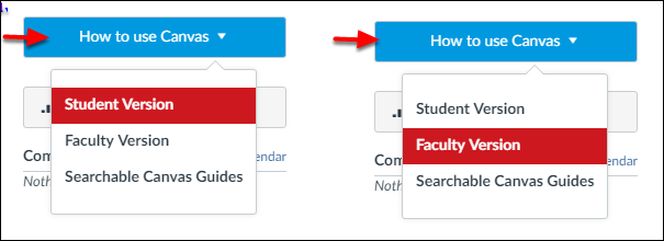 Screenshot of the How to use Canvas option.
