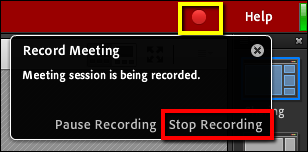 Screenshot of the Stop Recording option.