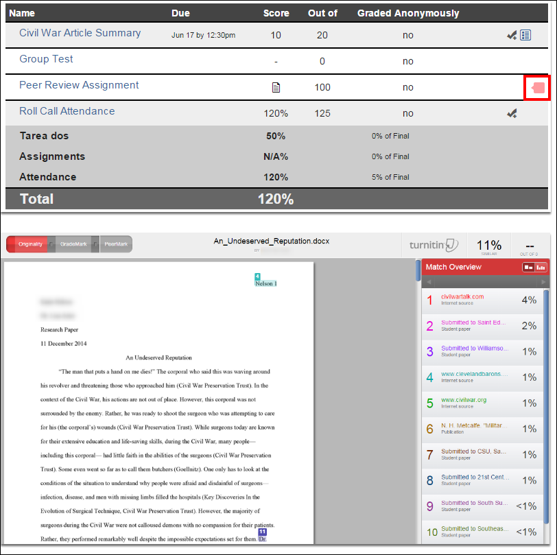 Screenshot of the turnitin results.