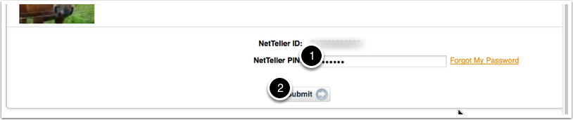 NetTeller Log In