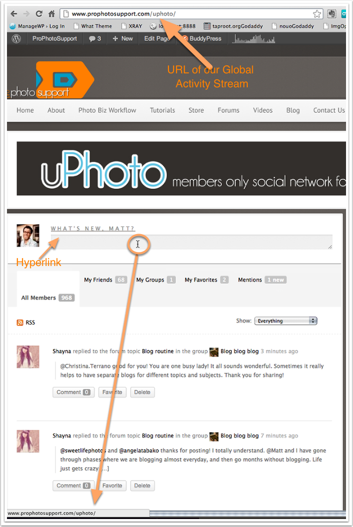 Buddypress activity stream update &quot;What's New&quot; hyperlink issue.