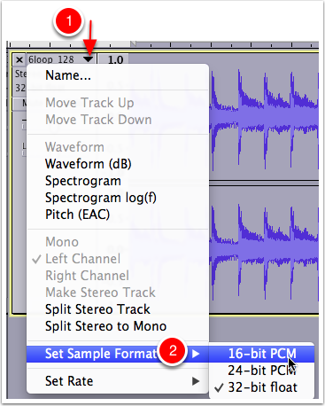 Changing the Bit Depth (called Sample Format in Audacity)