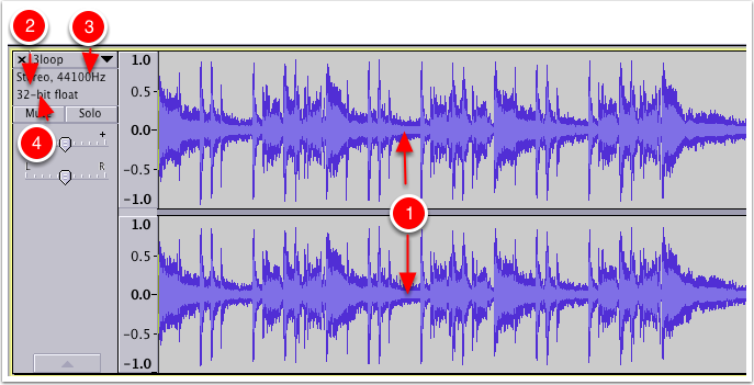 Waveform View of Impoted Audio