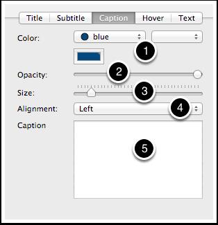 7.3 Text Inspector - Caption tab