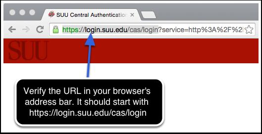 Verify the website address.