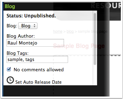 Fill in the blog settings form