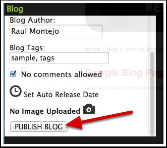 Publish the blog entry