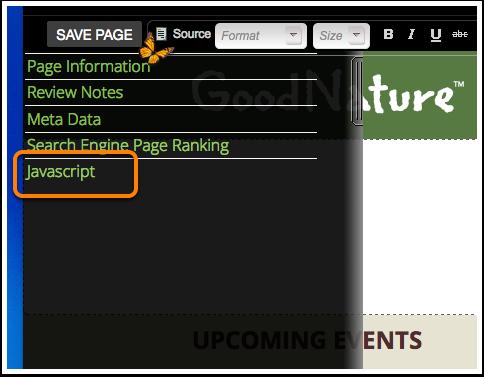 """Click on """"Javascript"""""""