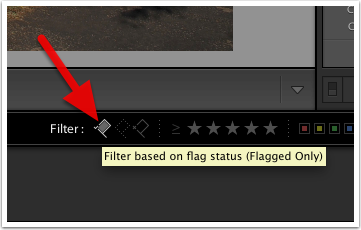 Apply the Flagged Filter