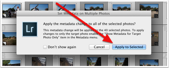 Set Metadata on Multiple Photos